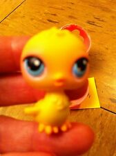 Littlest Pet Shop Since 2005 Yellow chick #13 or #82  In Egg. (1st 100 Pets)