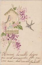 CARTE POSTALE ANCIENNE FANTAISIE GAUFFREE/DEUX MESANGES/LILAS/NICHOIR/ROSES/1903