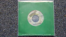 The Doors - Riders on the storm/ Changeling US 7'' Single