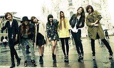 """T-ARA KPOP Posters  Korean Girl Group Silk Poster Prints 12x20"""" TARA2.1"""