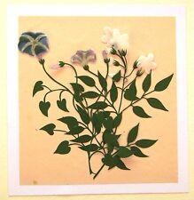 China Dibujos De Flores Decoupage cuatro Azul Y Tres Flores Blancas c1840