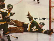 "DON BEAUPRE Minnesota North Stars 8"" by 10"" Photo Hockey Goalie Mask Pads #1"