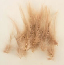 25 Quality Honey Brown Fine Hackle Feathers for Millinery and Crafts