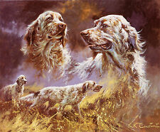 ENGLISH SETTER GUN DOG FINE ART LIMITED EDITION PRINT - by the late Mick Cawston