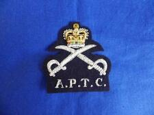 ARMY PHYSICAL TRAINING CORPS ( APTC ) BLAZER BADGE