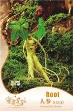 SEMILLAS DE GINSENG PLANTA MEDICINAL
