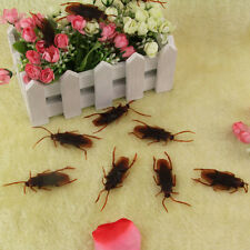 1 x Lifelike Fake Cockroach Roach Bug - Funny Prank Joke - Life Like