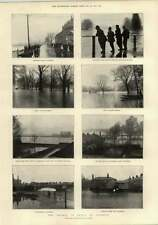 1897 The Thames In Flood At Windsor S Woods Mp Walthamstow