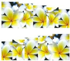 Nail Art Decals Transfers Stickers Pretty Yellow Flowers (A-874)
