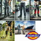 DICKIES WORKWEAR ED24/7 Everyday Bundhose Arbeitshose Multifunktion Gr. 21 - 30