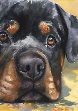 Rottweiler watercolor Print of the Original Watercolor Painting art  cool Rottie