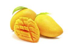 3 Fresh Tropicale Mango/impianto/Frutta Semi dall'Asia