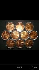 10pc 1993 -99 china rare wild animal unc coins
