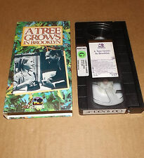 A Tree Grows in Brooklyn (VHS, 1992) Elia Kazan Peggy Ann Garner