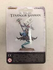 Warhammer Age of Sigmar Tzeentch Arconites TZAANGOR SHAMAN On Disc New
