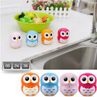 Cartoon Owl Shape 60 Minute Kitchen Timers Cooking Mechanical Timers Alarm Clock