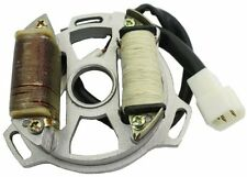 Stator Assembly 2-Coil for 50cc 2-stroke 1DE41QMB engines