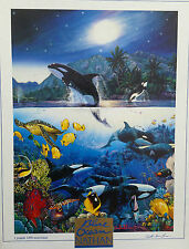 Nathan Harmony by Christian Riese Lassen 1000 piece underwater jigsaw puzzle