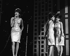 """The Ronettes 10"""" x 8"""" Photograph no 12"""