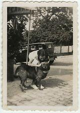PHOTO ANCIENNE - VINTAGE SNAPSHOT - CHIEN VOITURE TACOT FILLE DRÔLE - DOG CAR