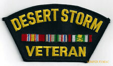 DESERT STORM VETERAN HAT PATCH GULF WAR PIN UP US ARMY MARINE NAVY AIR FORCE WOW