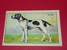 1920-1930 CHROMO GRANDE IMAGE ECOLE BON-POINT ANIMAUX CHIEN DOG HUND
