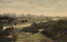 SHENFIELD (Essex ) :  Shenfield Common -A.H.J. series