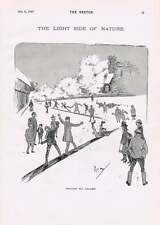 1895 John Hassall Phil May Cartoons Winter Humour Toboggan