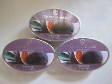 3 Colonial Candle ~~TROPICAL FIG~~ Simmer Snaps/ Tarts 2.4oz Oval