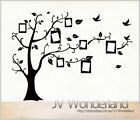 Family Tree Photos Picture Frame Wall Removable Decor Vinyl Sticker Decal Frames