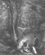 Hunting DOGS FOX HOUNDS & DEAD BIRDS RABBIT IN FOREST ~ 1851 Art Print Engraving