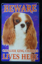DOG BREED 3D DIMENSION SMALL SIGN BEWARE CAVALIER KING CHARLES LIVES HERE  D2