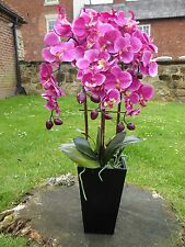 Artificial Potted Plants - 70cm Large Pink Orchid Plant In A Black Wooden Pot