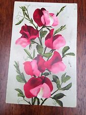 Vintage Valentine's Pink & Red Sweet Pea Flowers Edwin Mitchell Postcard Posted