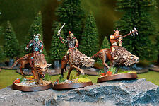 3 Pro Painted Hunter Orcs on Fell Wargs B . The Hobbit - Lord of the Rings