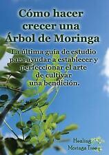 Como Hacer Crecer una Arbol de Moringa : La última Guía de Estudio para...