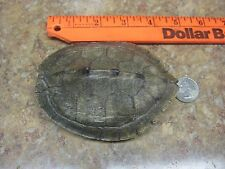 Turtle Shell Map Turtle SMALL Crafts Necklaces and More #M20
