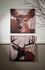 New Rustic Hunting Camp Cabin Lodge 2  DEER COUPLE  PICTURE Canvas Wall Hanging