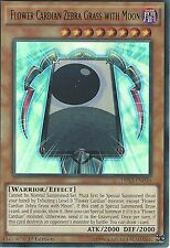 YU-GI-OH ULTRA RARE: FLOWER CARDIAN ZEBRA GRASS WITH MOON - DRL3-EN036 - 1st ED