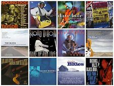 12 blues CD lot LONG JOHN HUNTER,DAVE HOLE,MICHAEL HILL'S BLUES MOB,MUDDY WATERS