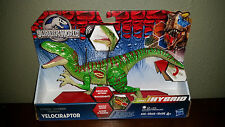 Jurassic World Hybrid Velociraptor Growling Action Dino Hybrid MIB NEW