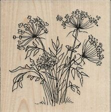 """Queen Annes Lace"" Rubber Stamp by Stampendous"