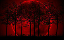 Framed Print - Giant Red Moon Behind Dark Trees (Picture Poster Gothic Wood)