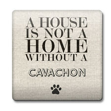 A house is not a home without a Cavachon Coaster 50