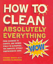 How to Clean Absolutely Everything,GOOD Book