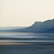 Stampa fotografia flora costiera Decorazioni da parete Spiaggia 8X8 (POSTER ARTE FOTO)