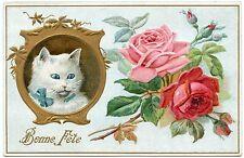 PORTRAIT DE CHAT. CAT. KATZE. FLEURS . FLOWERS.  GAUFRé. EMBOSSED