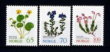 NORWAY - NORVEGIA - 1973 - Fiori di montagna