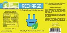 Recharge 16oz Real Growers Soil Conditioner Microbial Superpack