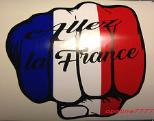 STICKER AUTOCOLLANT POING DRAPEAU FRANCAIS EURO 2016  FOOT ALLEZ LA FRANCE SPORT